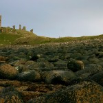 Dunstanburgh castle, you found it you smart little French thing